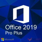 2019 Microsoft Office Pro Plus for home and small organizations