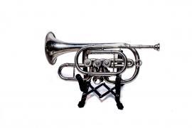 Аренда, прокат саксофона, трубы, флейты, кларнета