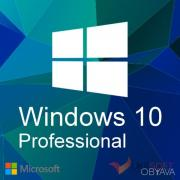 Microsoft Windows 10 Professional for house and small organizations