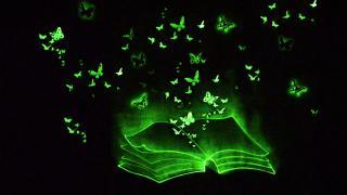 шоу на праздник,рисунки светом, световая анимация